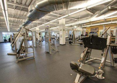 asi-gym
